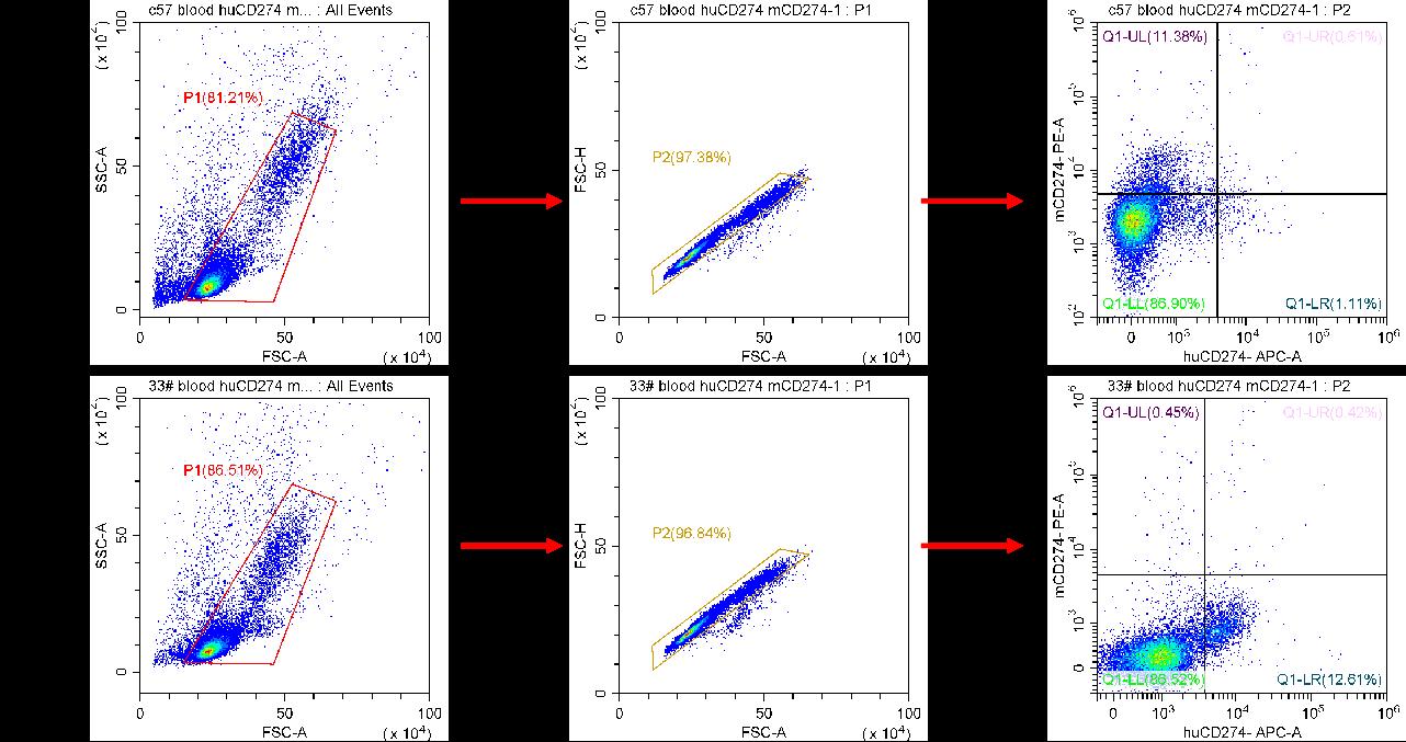 PD-L1-HU-1.png